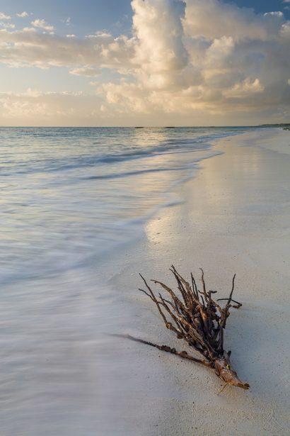 flotsam-beach.jpg